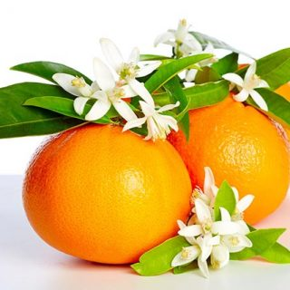ビターオレンジ花油