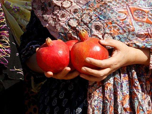 サーヴェ産のザクロ「マラス種」